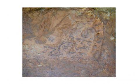 Escena bèl·lica de l'abric de la Vall II