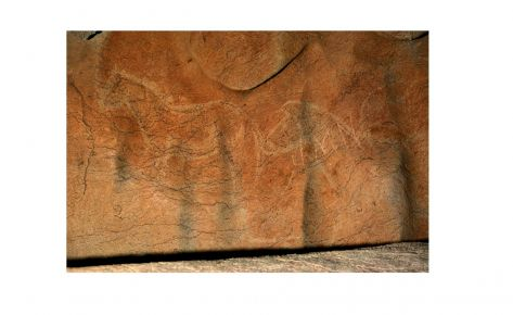 Cavalls gravats i pintats