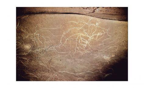 Gran panell amb cavall I bisons gravats