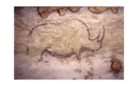 Rinoceront del fris dels tres rinoceronts, dibuixats amb diòxid de manganès