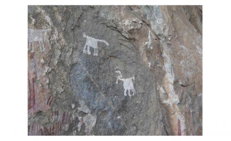 Pintures rupestres de Chongoni