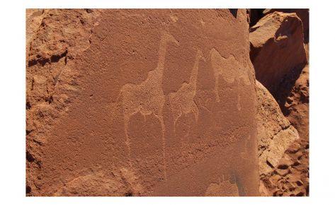 Petroglifs de Twyfelfontein