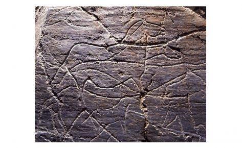 Petroglifs de la vall del Côa