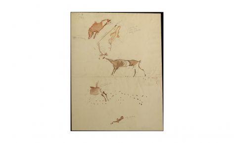 Jabalí y ciervos con rastro de sus huellas